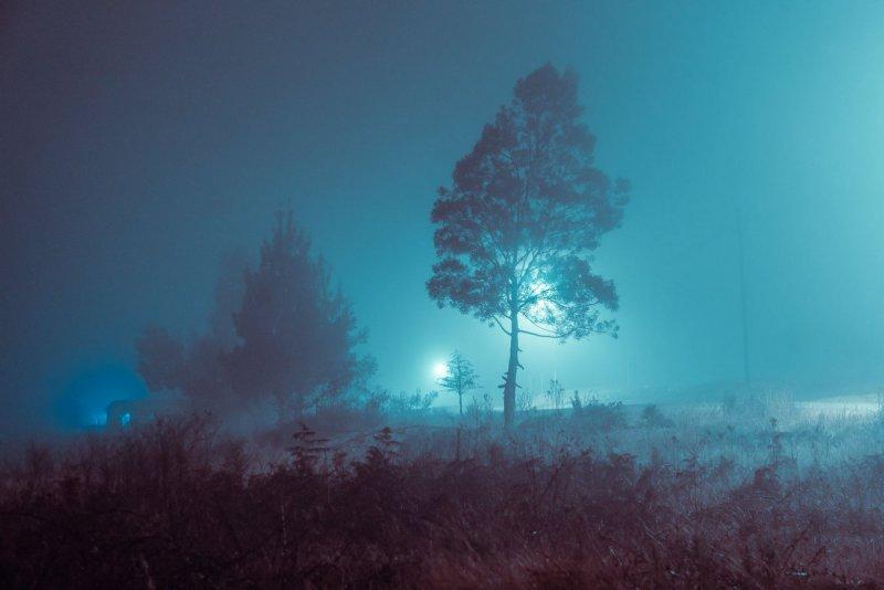 Фотограф Эльза Бледа - №15