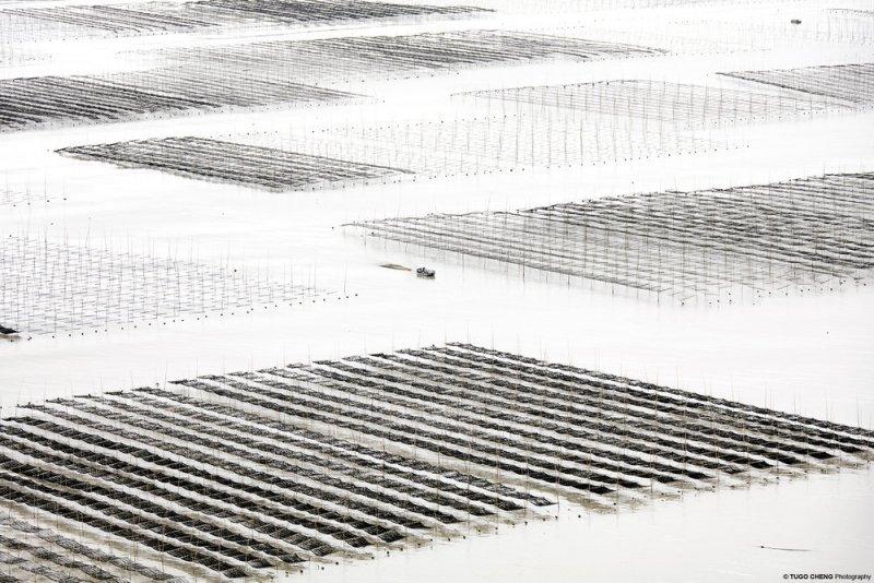 Туго Ченг  «Прибрежная геометрия» - №12
