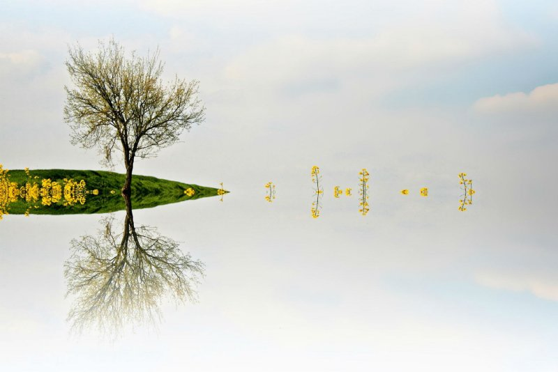 Симметрия и минимализм в фотографиях Адриенн Баласко - №2