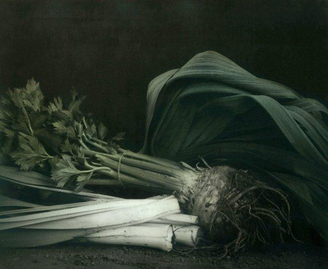 Фотограф Ингар Краусс - №10