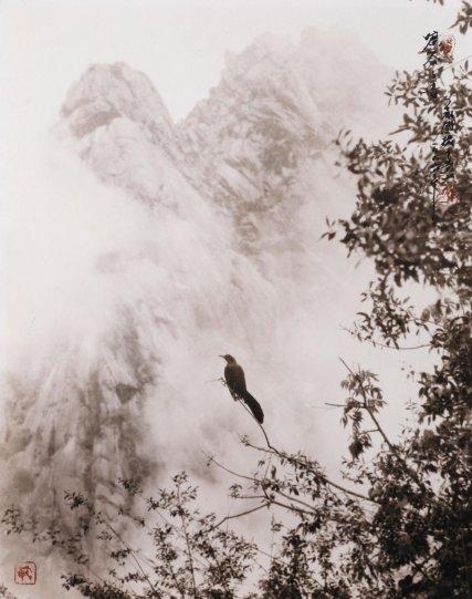 Мастер безмятежных пейзажей - №26