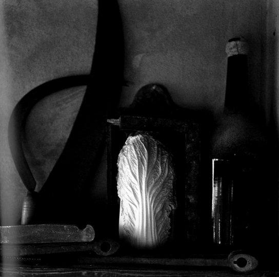 Фотограф Пьерджорджо Бранци - №24