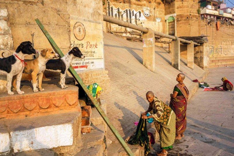 Загадочная Индия - №17