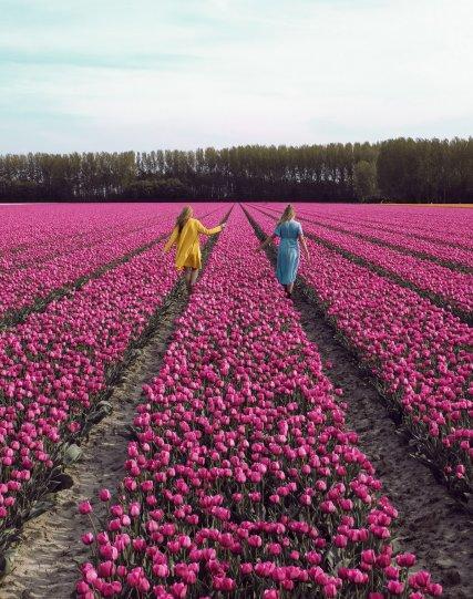 Фотографии из Нидерландов - №6