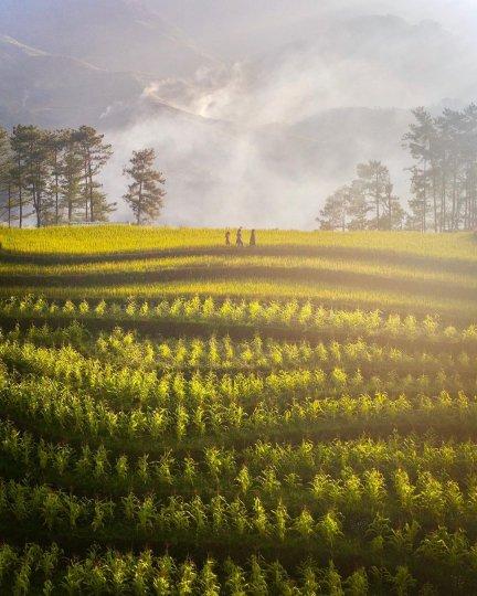 Вьетнам с высоты - №15