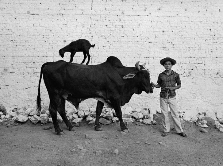Мир чёрно-белой фотографии - №8