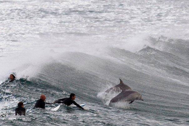 Daniel Munoz/Reuters
