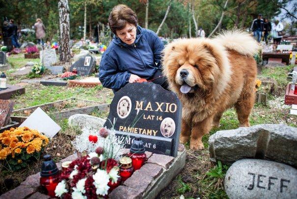 Wojtek Radwanski/AFP/GettyImages