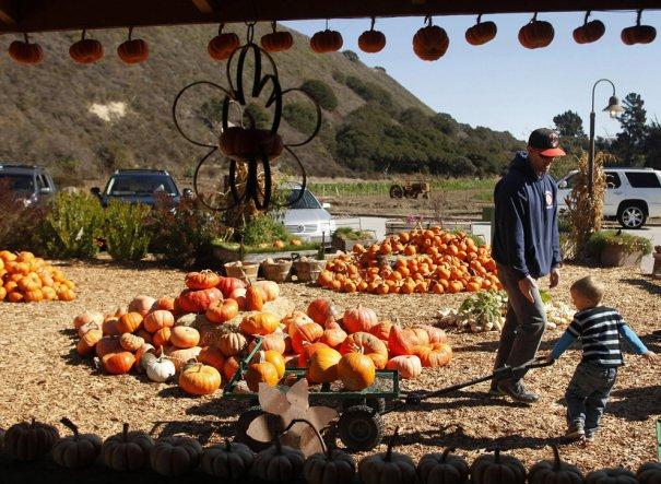 David Royal/Monterey County Herald