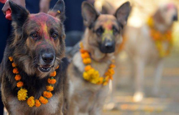 Prakash Mathema/AFP/Getty Images