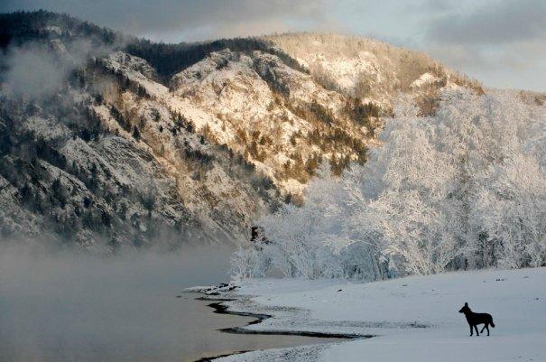Река Енисей - №6
