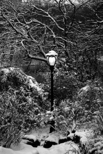 5 шагов по улучшению зимних фотографий - №4