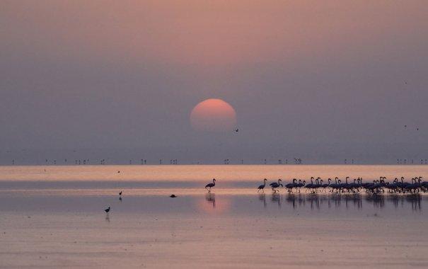 © Sheila Jones/National Geographic Photo Contest