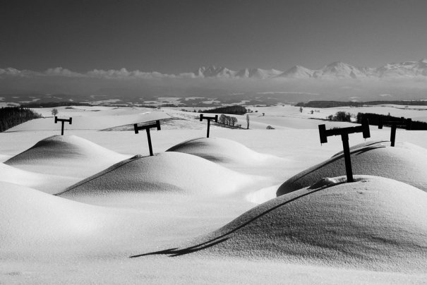 © Kent Shiraishi/National Geographic Photo Contest