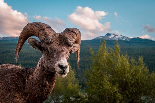 © Scott Trageser/National Geographic Photo Contest