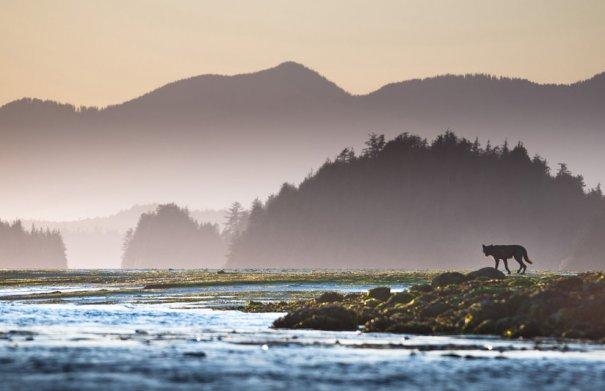 © Sander Jain/National Geographic Photo Contest