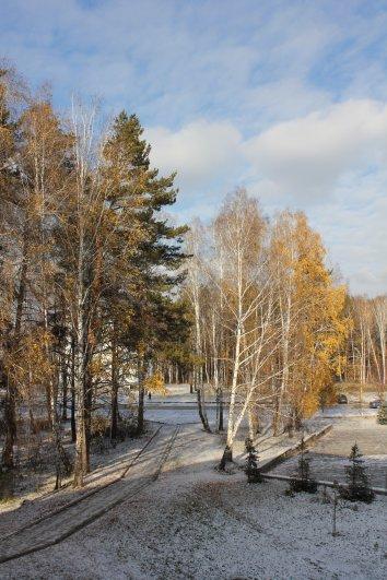 Поздняя осень сибирской аллеи
