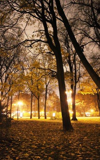 Александровский сад осень