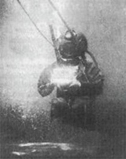 Подводная фотография Уильяма Томпсона
