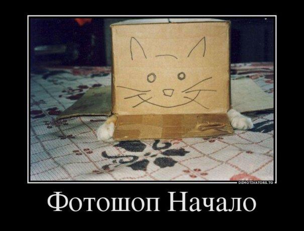 Немного Фото юмора! - №1
