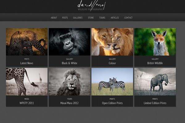 Сайты-портфолио фотографов дикой природы - №5
