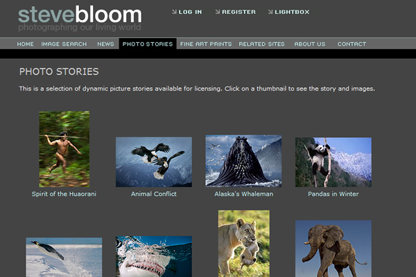 Сайты-портфолио фотографов дикой природы - №6