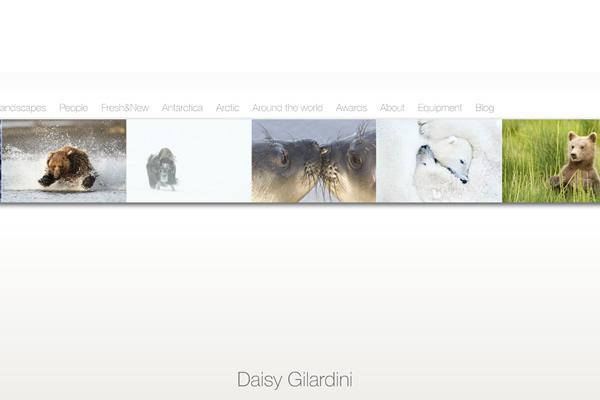 Сайты-портфолио фотографов дикой природы - №9