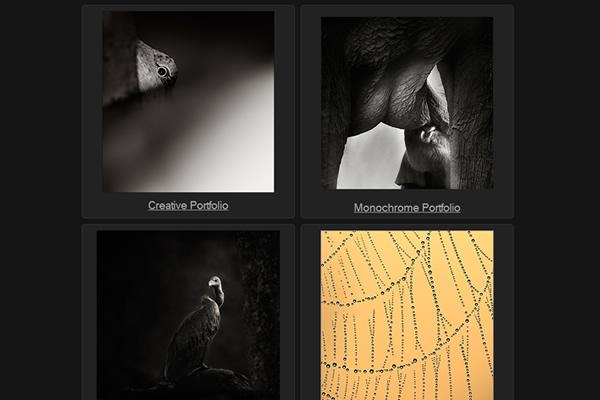 Сайты-портфолио фотографов дикой природы - №10