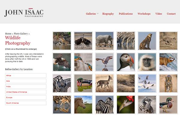 Сайты-портфолио фотографов дикой природы - №16