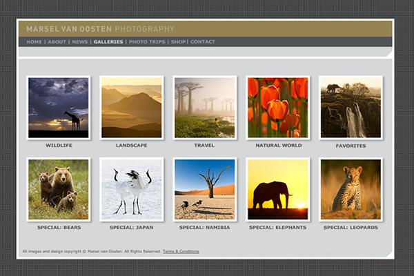 Сайты-портфолио фотографов дикой природы - №19