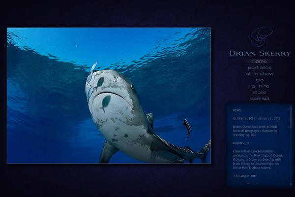 Сайты-портфолио фотографов дикой природы - №20