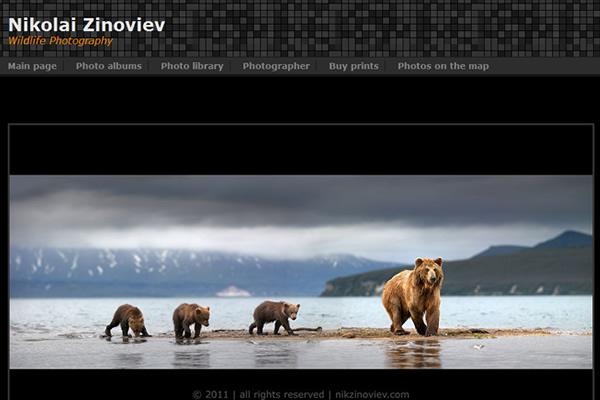 Сайты-портфолио фотографов дикой природы - №21