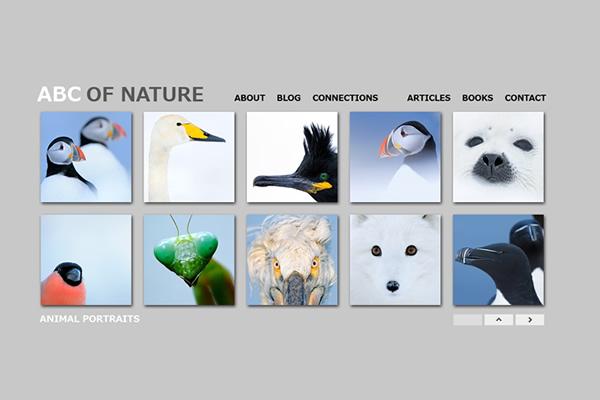 Сайты-портфолио фотографов дикой природы - №22