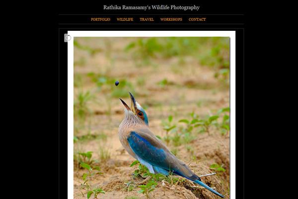 Сайты-портфолио фотографов дикой природы - №23