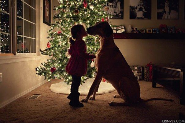 Рождественские открытки 2012 - №8