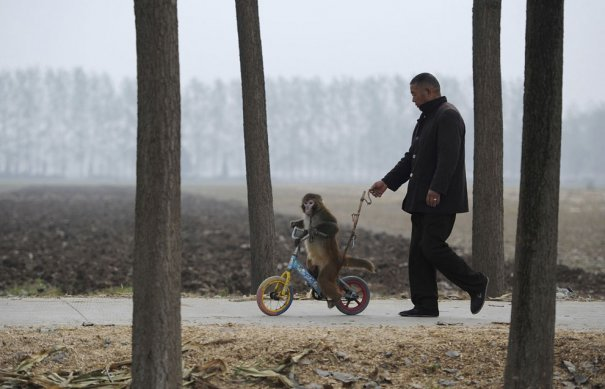 Reuters/Stringer