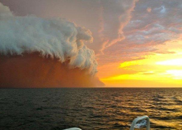 Reuters/Brett Martin/fishwrecked.com