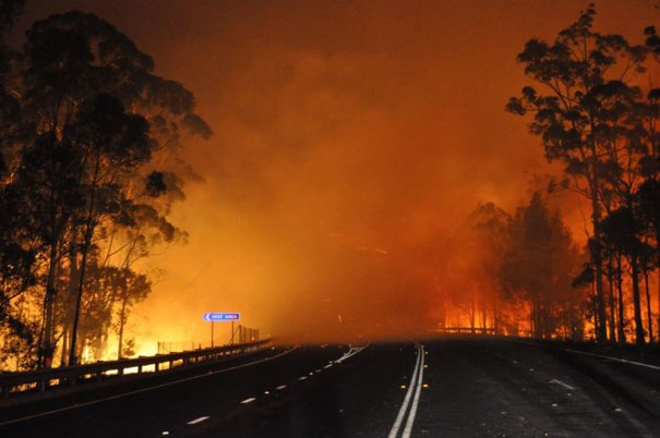 AP Photo/NSW Rural Fire Service, James Morris