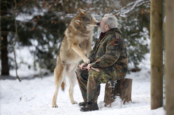 Мужчина - волк - №13