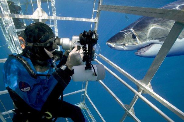 Фото под водой