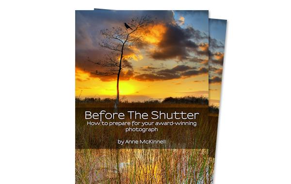 15 бесплатных электронных книг по фотографии - №5
