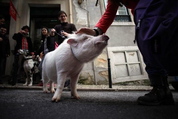 Francisco Seco/Associated Press
