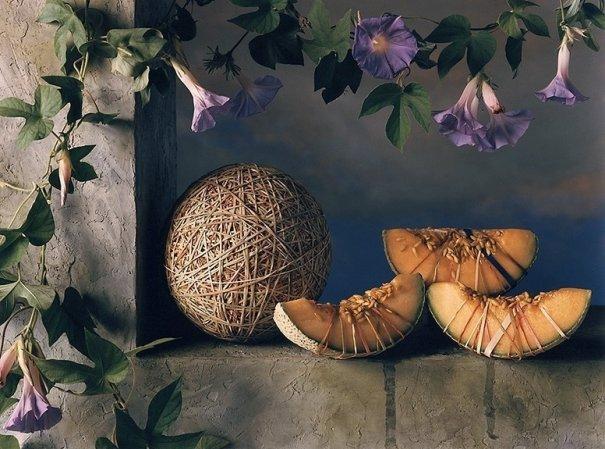 фото натюрморт цветов