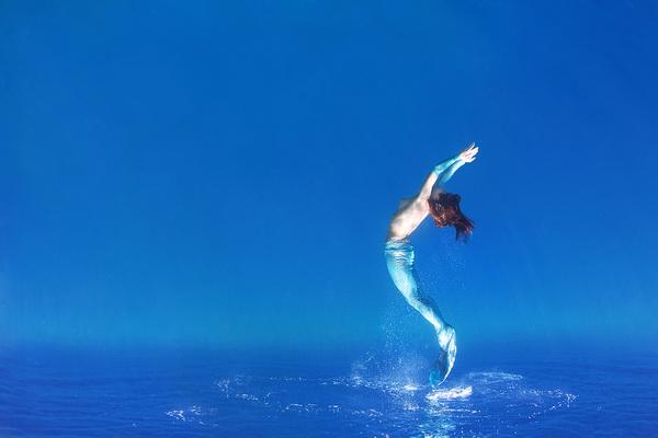 Фото конкурс - фестиваль «Золотой Дельфин» - №3