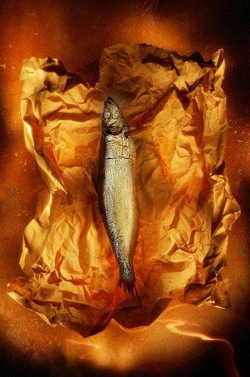 Рекламные яркие фото от Георгия Кургина - №5