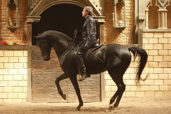 Красивые фото лошадей - мастер Лидия Невзорова - №10