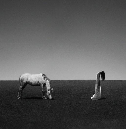 Фотограф Ноель С. Освальд/Noell S .Oszvald - №7