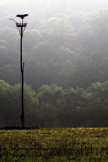 Блог фотографии Кэтлин Коннелли - хороший пример как его вести - №9