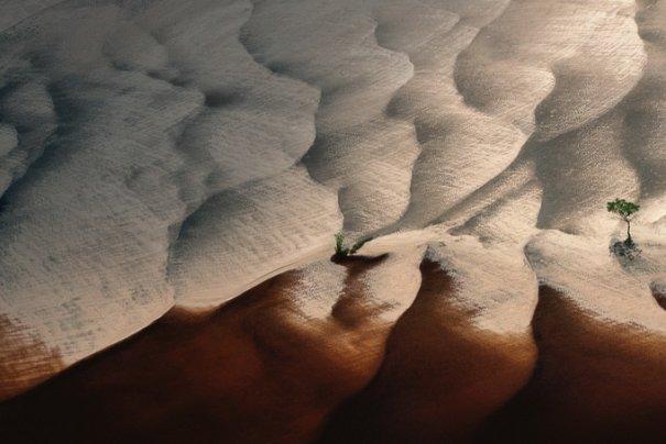 Фотограф Ян Артюс-Бертран/Yann Arthus-Bertrand - №9