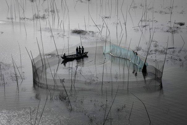 Фотограф Ян Артюс-Бертран/Yann Arthus-Bertrand - №24